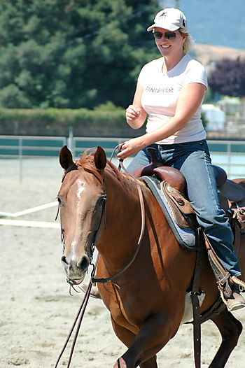 Horses 027