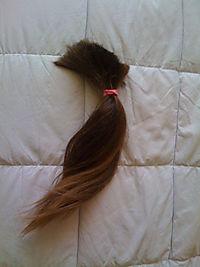 Vis hair